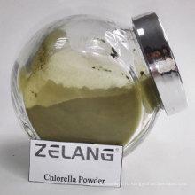 Преимущества органической хлореллы Источник Naturals Chlorella