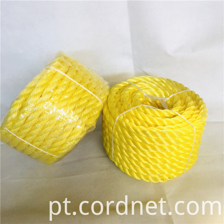 Pp Twisted Rope 4