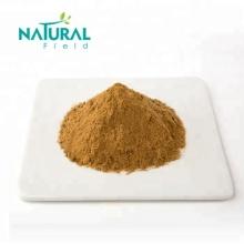 ganoderma lucidum extract reishi mushroom powder