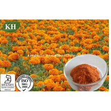 Natural Organic Zeaxanthin 2%~60% by HPLC; Marigold Extract