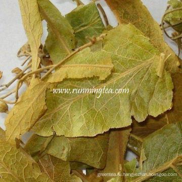 Высушенный липовый лист