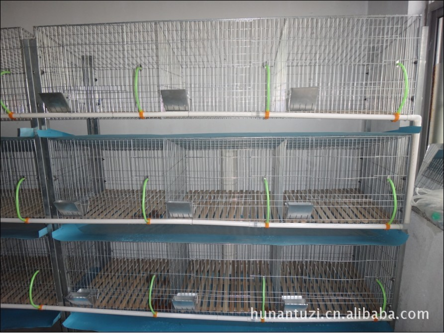 Rabbit breeding cage