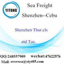 Shenzhen Port LCL củng cố đến Cebu