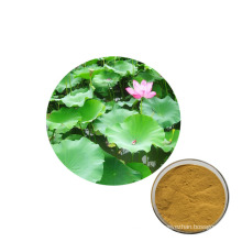 Factory Supply Natural high quality Lotus leaf powder