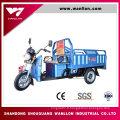 Cargaison électrique de 650W a utilisé le tricycle électrique de trois roues pour le transport