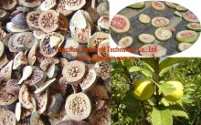 Dried and natural guava fruit slice