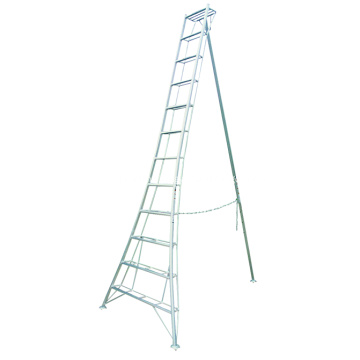 Aluminum Exrusion for Ladder Rails and Steps