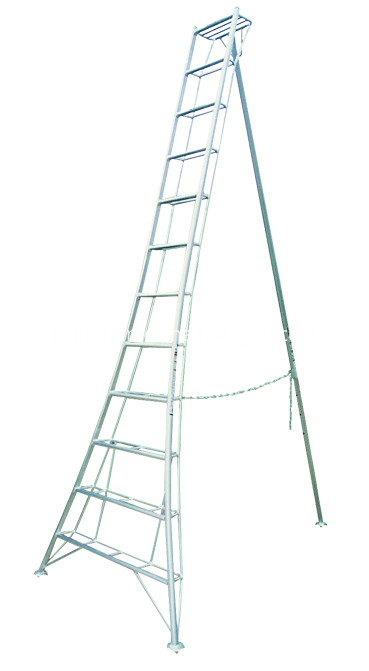 Welding ladder