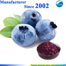 Natürliche organische Blaubeerextrakt-Flüssigkeit, Blaubeerextrakt 25%
