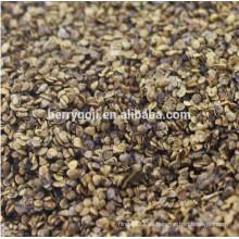 Semillas crudas de Goji negro para sembrar Semillas de goji orgánico