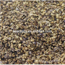 Raw Wild Black Goji seeds for planting Organic goji berry seeds