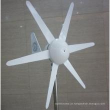 100W DC12V / 24V Turbina de vento horizontal, gerador de vento Preço para Casa