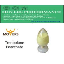 Steriods de haute qualité: Enanthate de Trenbolone pour le bodybuilding