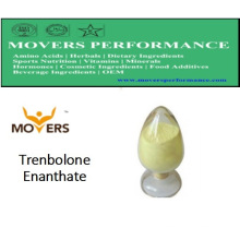 High Quality Steriods: Trenbolone Enanthate for Bodybuilding