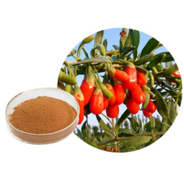 Best Pure Herbal No Additive Goji Powder