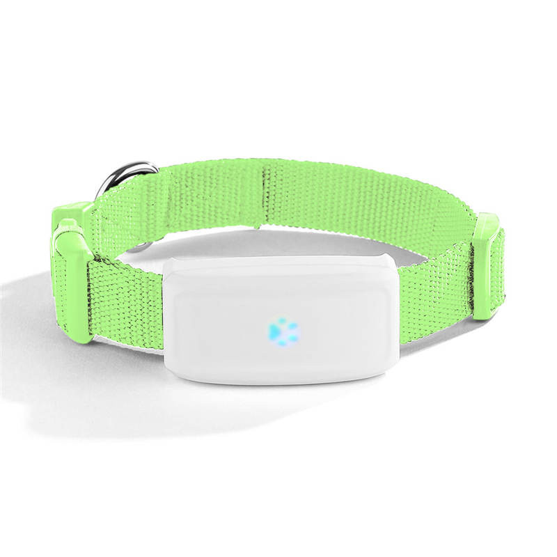 gps tracker for dogs chip