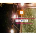 slt0198 lumières de ficelle d'intérieur de décoration de Noël de mariage imperméable de vacances de RVB LED avec la prise de l'UE EU