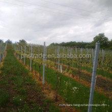 powder coating metal vineyard post/grape post