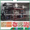 China-Blumen-Rosen-Pfingstrose Chrysantheme-Gefrier-trockene Maschine