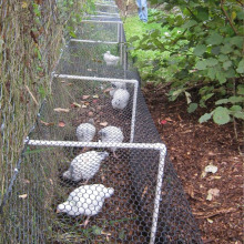 Galvanzied Hexagonal Rabbit Wire Fencing