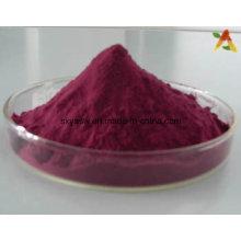 Extracto de baga de sabugueiro 25% Anthocyanidin