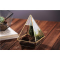Super Large Shape Hanging Glass Plant Terrarium Geometric