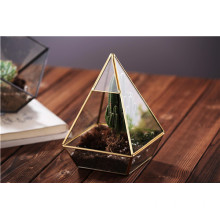 Super Large Shape Glass Plant Terrarium Geometric