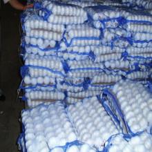 Ajo blanco fresco normal para el mercado de Arabia Saudita