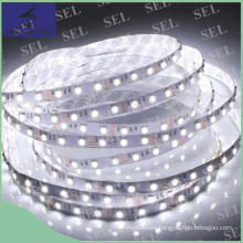SMD5050 White Warm Whtie DC12V LED Flexible Strip Light