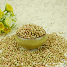 Trigo sarraceno dulce / alforfón almohada