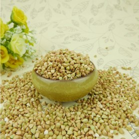 Cina Sweet Buckwheat dalam shell