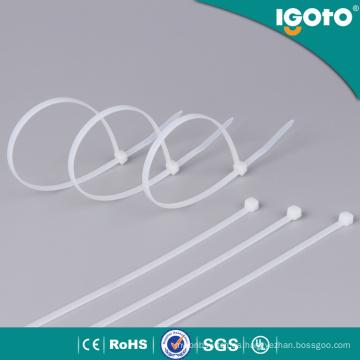 Correa de nylon plástica de autorretención del proveedor de China