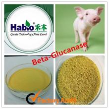 Enzima Habio Beta glucanase para Pourtry / Camada de ovo / Ruminante / Leitão