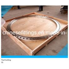 Плоская лицевая панель FF Встроенные кованые фланцы из нержавеющей стали