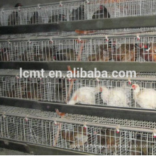 Broiler cage design high quality manufacturing chicken cage