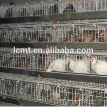 Бройлерные клетки конструкции высокого качества, производство куриного клетке