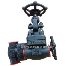 ANSI Standard Forged Carbon Steel A105 Rosca final Globe Valve