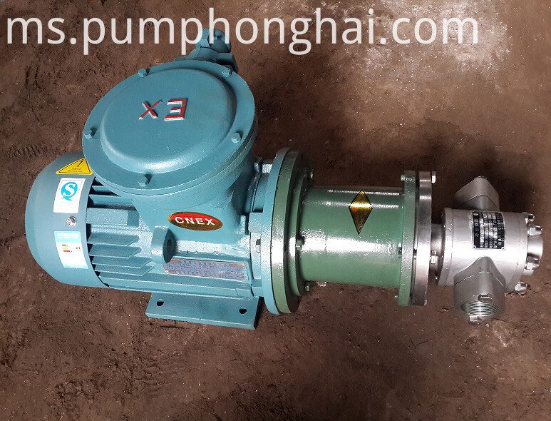 Magnetic drive gear oil pump (5)