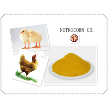 Nutricorn Corn Gluten Meal Feed Additive for Chicken