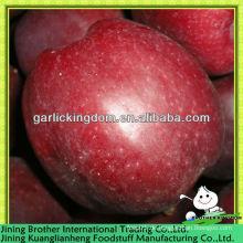 China frischen roten leckeren Apfel