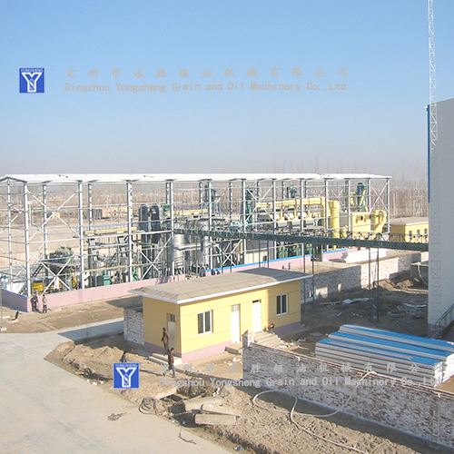 300T Oil Press Turnkey Project