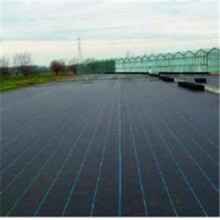 Anti Aging Popular Woven Weed Geotextile Control Fabric