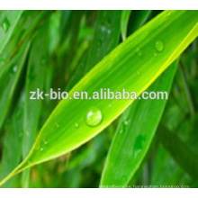 Extracto de hoja de bambú del precio de fábrica de alta calidad