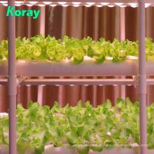 Agricultura vertical em casa com sistema hidropônico