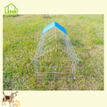 Gegalvaniseerde Little Chicken & Rabbit Metal Cage
