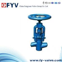 Valve Globe haute pression pour centrale électrique
