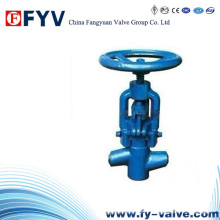 High Pressure Globe Valve for Power Station