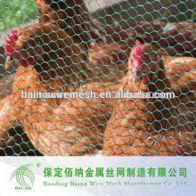 Hexagonal Poultry Fence Fileira De Frango