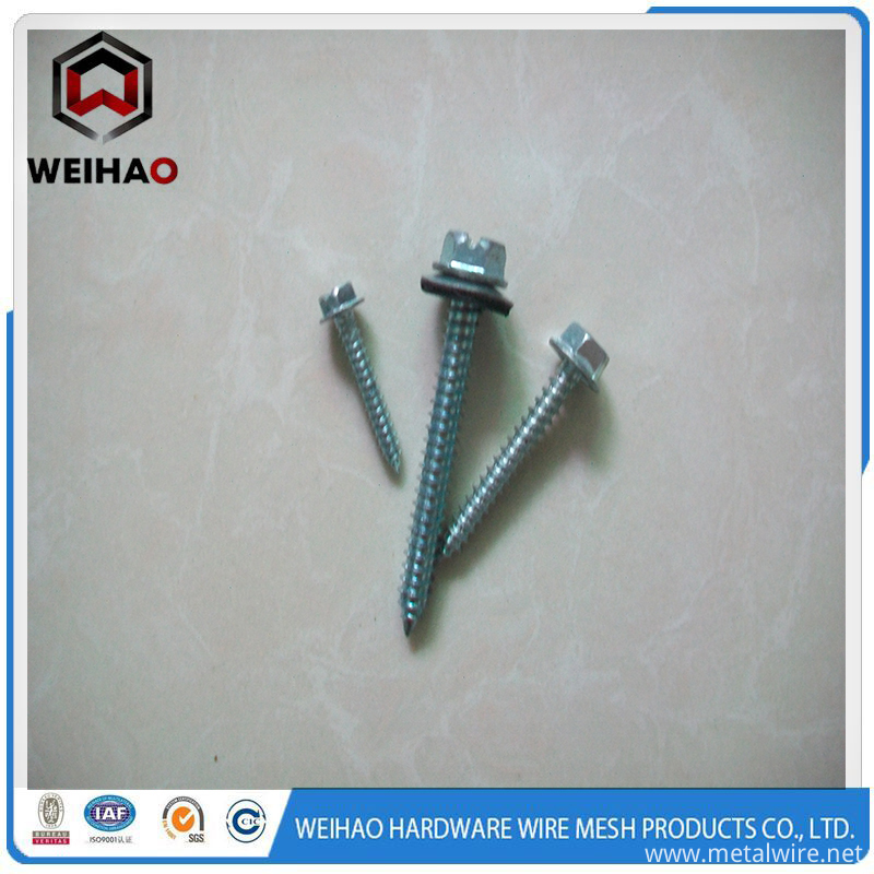 self tapping screw caq