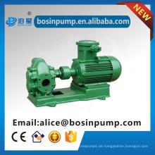 Standard-Struktur Zahnradpumpe Dieselmotor Ölpumpen